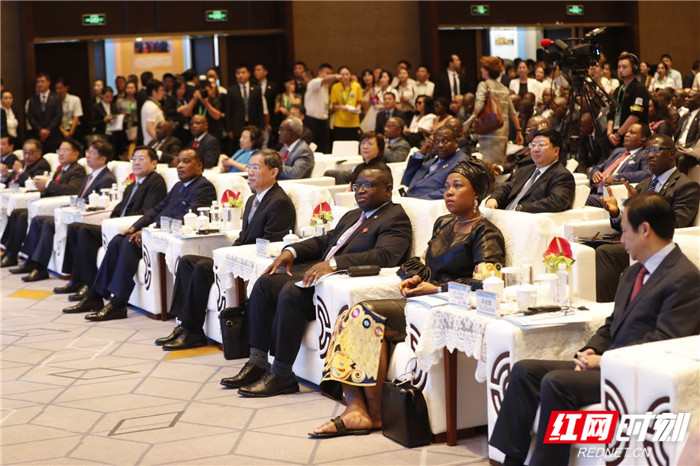 Changsha the 4th Investing in Africa Forum